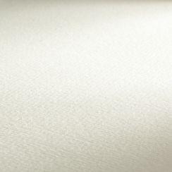 Ingres 100 g/m²-Branco-62,5 x 48 25 fls