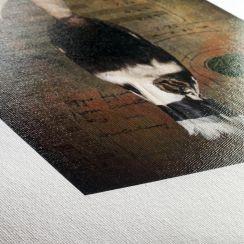 Leonardo Canvas 390