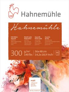 Hahnemühle 300 Mould Made-Fino-10 fls-36x48